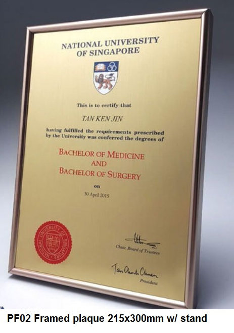 PF02 Framed plaque 215x300mm with stand