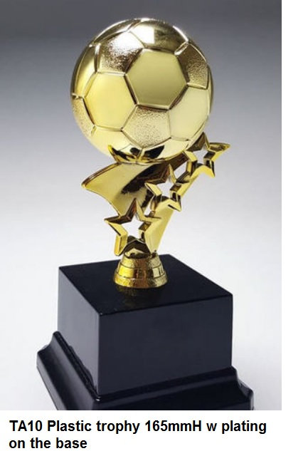 TA10 Plastic trophy 165mmH w plating on the base