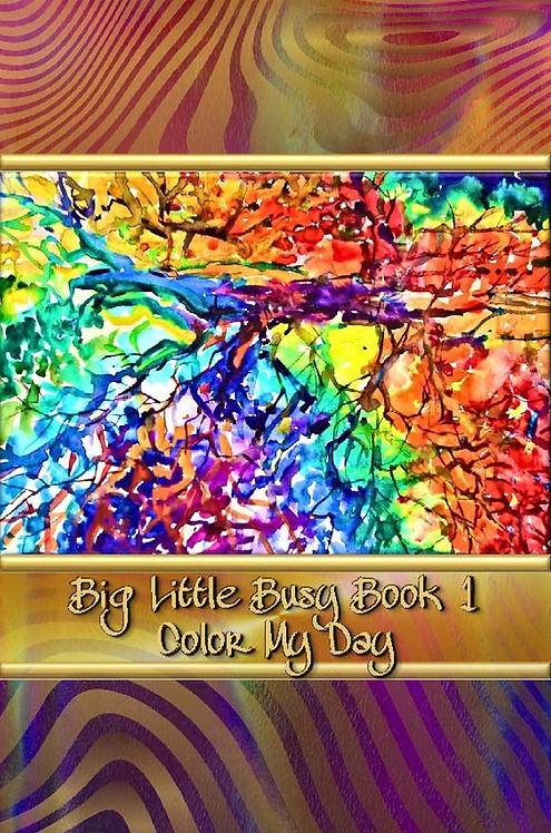 Big Little Busy Book 1 - Color My Day