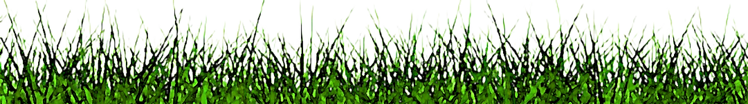 GRASS_2-removebg-preview ENHANCED WATERC