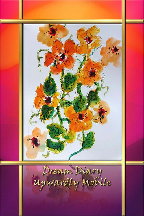 Dream Diary - Upwardly Mobile