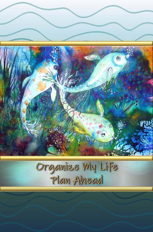 Organize My Life - Plan Ahead