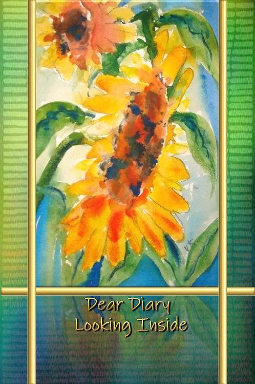 Dear Diary - Looking Inside