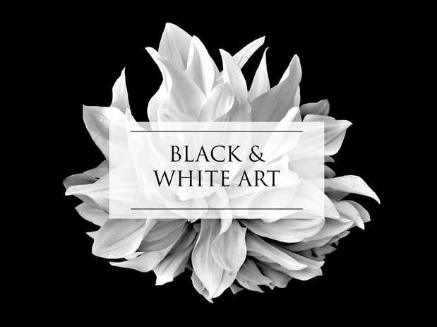 BLACK & WHITE ART