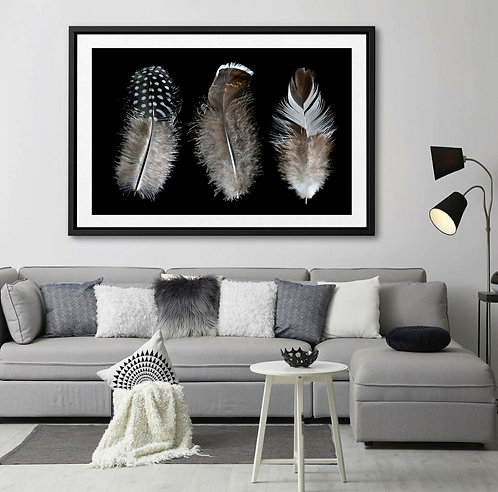 And then there were three ~ Feather Print Wall Art ~ By Nadia Culph therandomimage.com