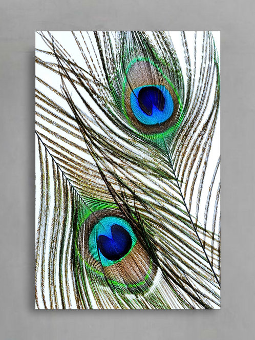 Peacock Feather Eyes ~ Boho Inspired Wall Art therandomimage.com