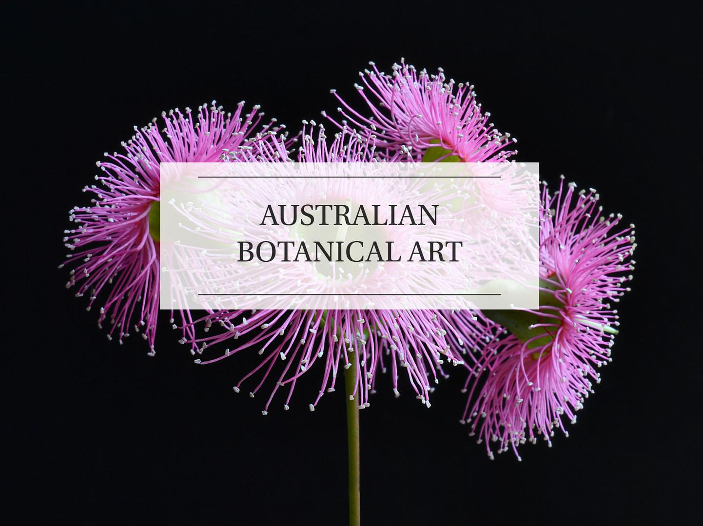AUSTRALIAN BOTANICAL ART