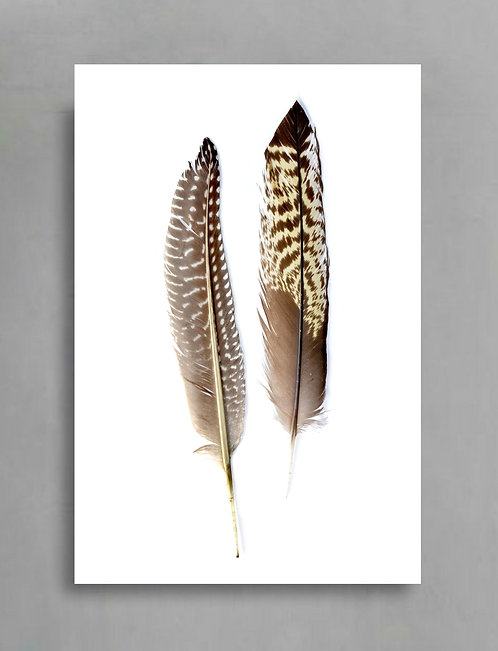 As Light As ... Scandi Inspired Feather Art ~ By Nadia Culph ~ By Nadia Culph