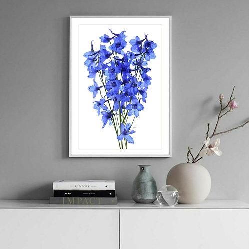 blue delphinium grandiflorum large floral wall art therandomimage.com