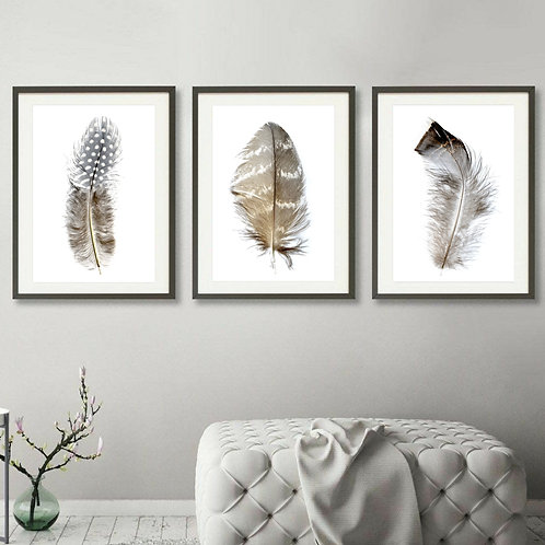 Feathers On White Triptych ~ Set of Feather Prints therandomimage.com