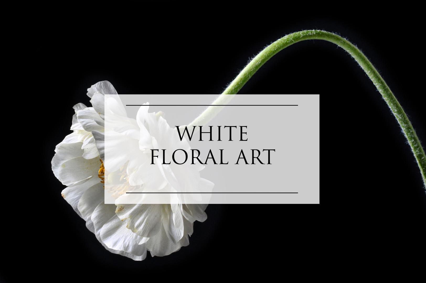 WHITE FLORAL ART