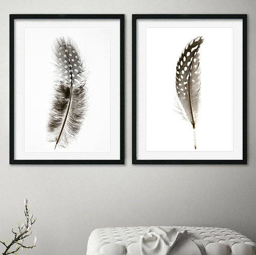 A set of two printable spotted feather prints. Downloadable minimalist photography therandomimage.com