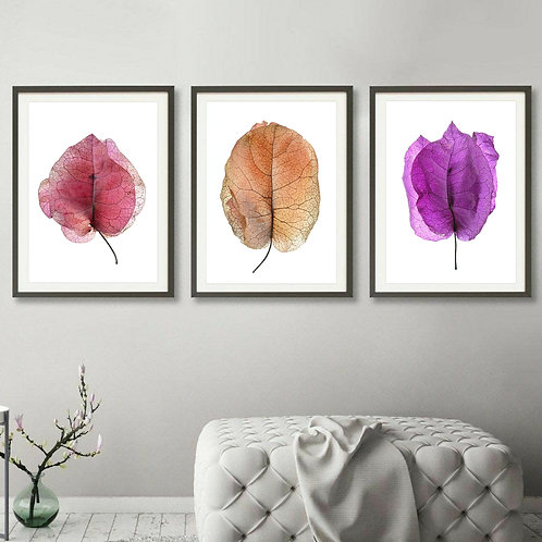 Bougainvillea Triptych ~ Set of 3 Colourful Floral Artworks therandomimage.com