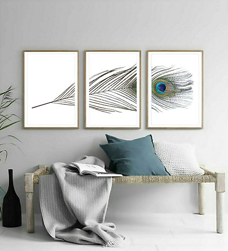 Peacock Feather Triptych ~ Printable Digital Download therandomimage.com