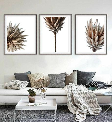 Rustic Protea Triptych ~ Minimalist Set Of 3 Prints therandomimage.com