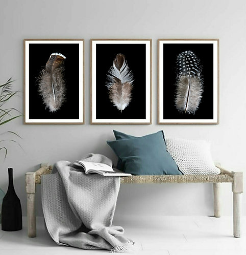Feather Triptych ~ Set Of 3 Prints Digital Downloads therandomimage.com