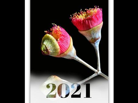 2021 CALENDARS COMING SOON!