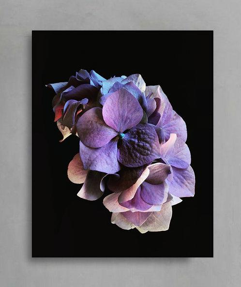 Purple Hydrangea ~ Printable Digital Download therandomimage.com