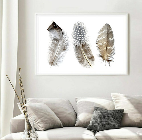 Three Feathers ... Feather Print Wall Art ~ By Nadia Culph therandomimage.com