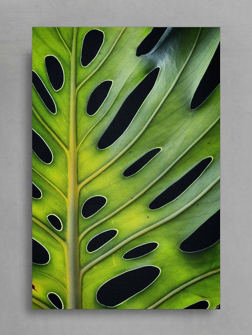 Monstera Leaf ~ Digital Download therandomimage.com