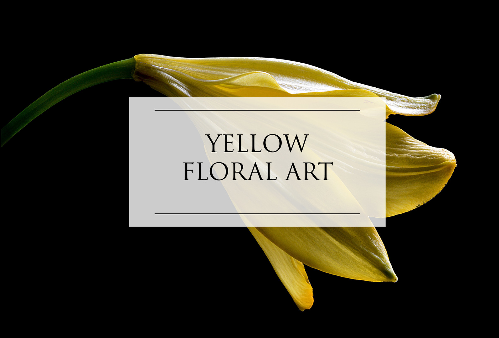 YELLOW FLORAL ART
