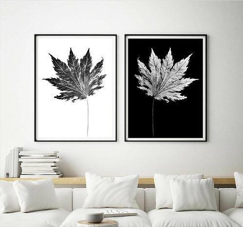 Liquidambar Leaves Diptych ~ Black and White Botanical Wall Art Set Of 2 therandomimage.com