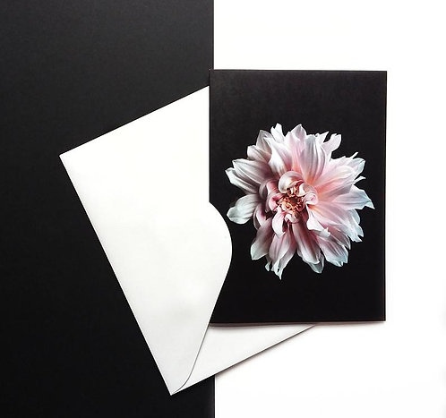 Floral Greeting Cards ~ Pack of 4 Dahlia Print Stationery therandomimage.com