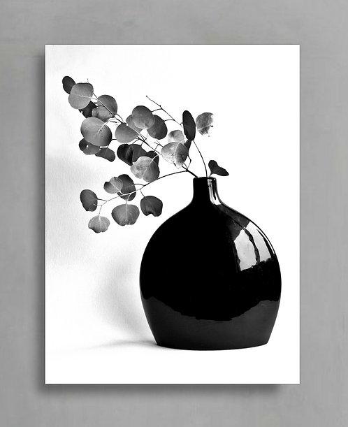 The Cat in the Window ~ Black & White Vase Still Life therandomimage.com