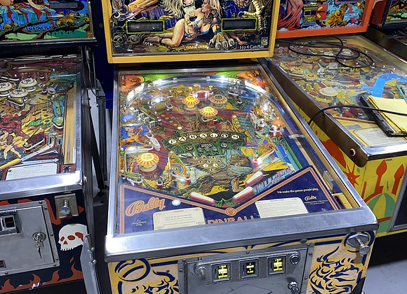 Paragon Pinball Machine