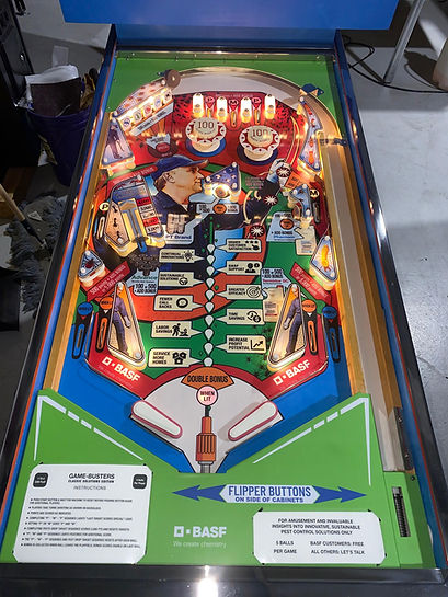 BASF Custom Pinball Machine Playfield Pest World 2019