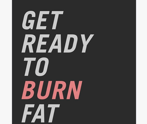 FITSQR Fat Burn Program