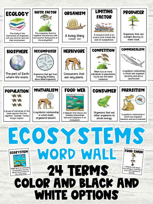 Ecosystems Word Wall: Color and Black and White Versions