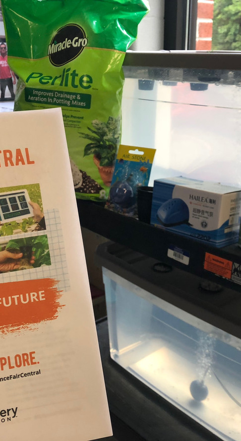 Science Fair Central — Build Your Own Hydroponic Garden!