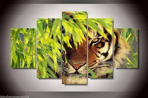 Jungle Tiger - 5 Piece Canvas Set