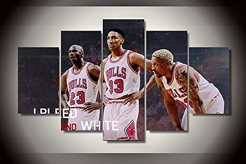 Chicago Bulls NBA - 5 Piece Canvas Set