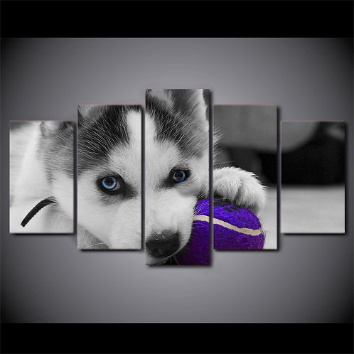Husky puppy - 5 Piece Canvas Set