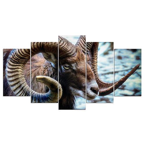 Goat - 5 Piece Canvas Set