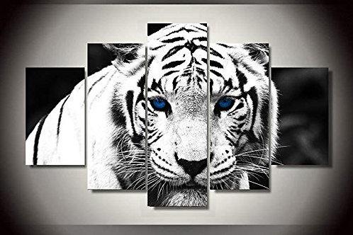 White Tiger - 5 Piece Canvas Set