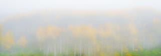 JR_Landscape_Samples-5600.jpg