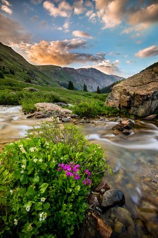 JR_Landscape_Samples-0924.jpg