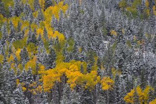JR_Landscape_Samples-5344.jpg