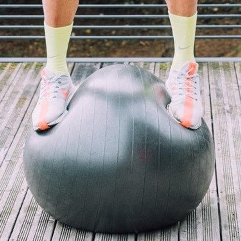 Swiss Ball Pro