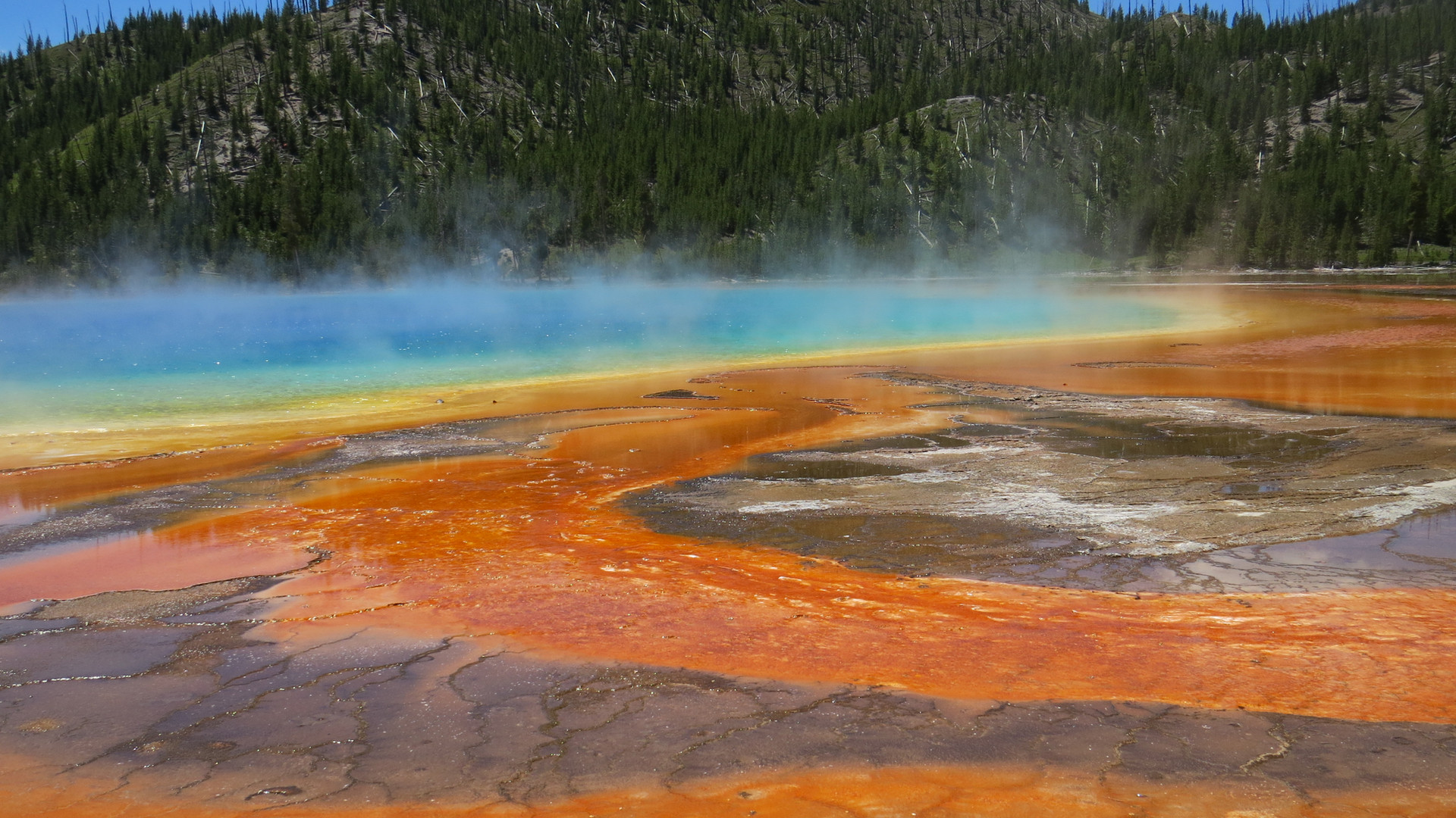 Yellowstone-Day-Tour-grand-prismatic-spr