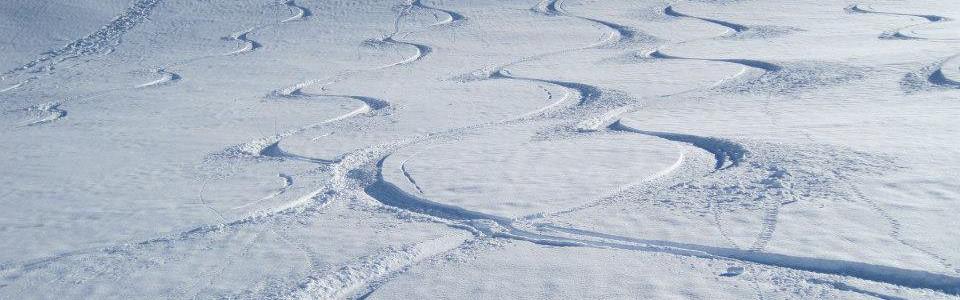 Ski-New-Zealand.jpg