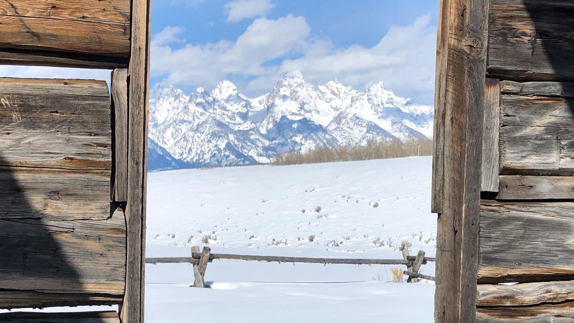 jackson-hole-wildlife-tour-shane-cabin.j