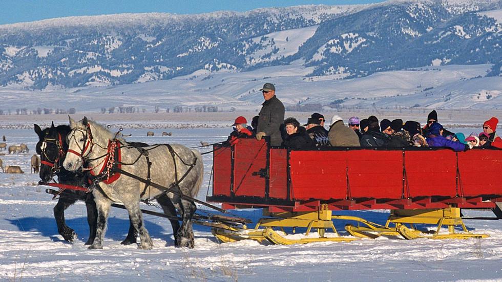 Jackson-hole-wildlife-tour-sleigh-rides.