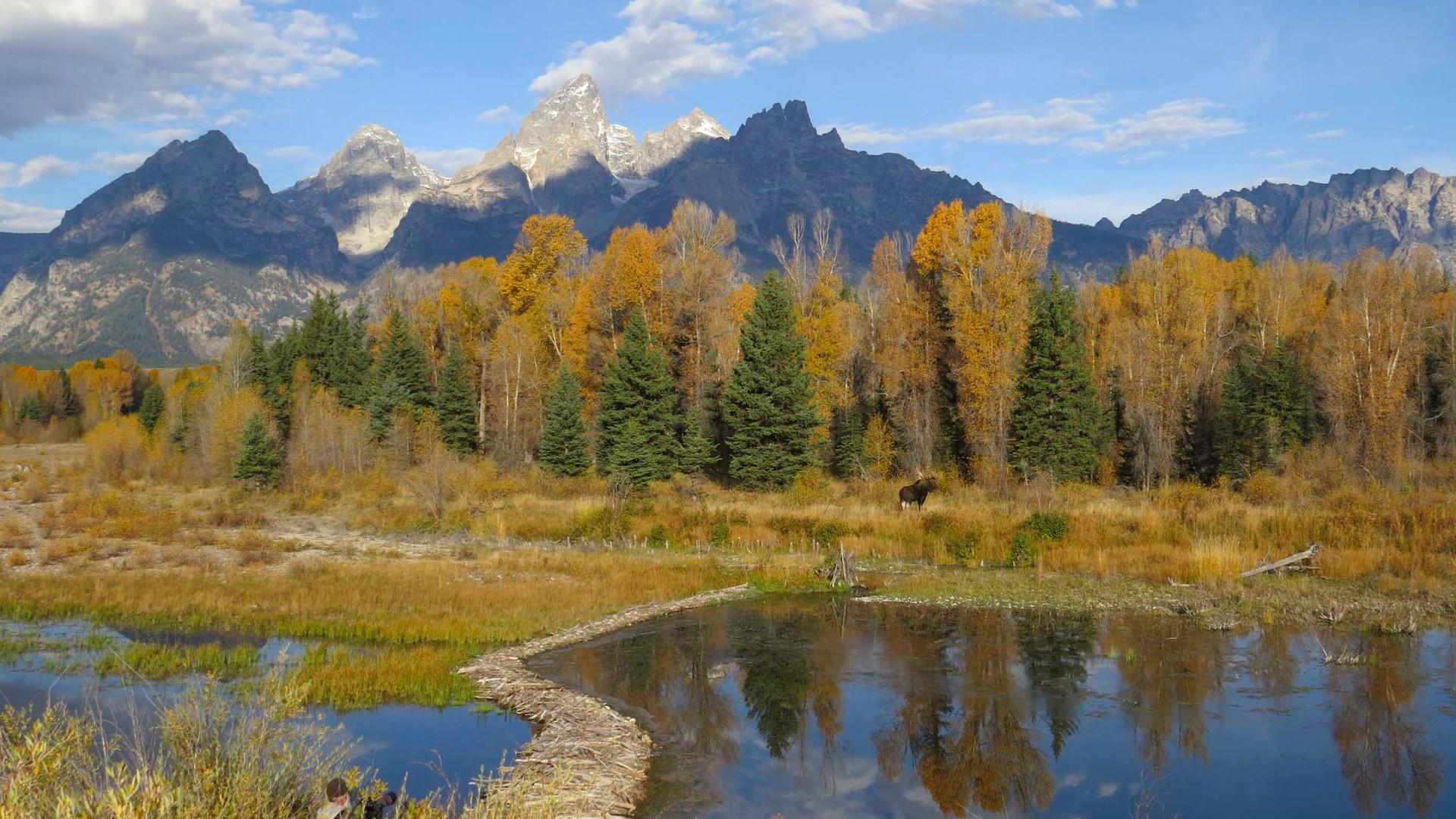 Yellowstone-Day-Tours-Tetons-in-Fall.jpg