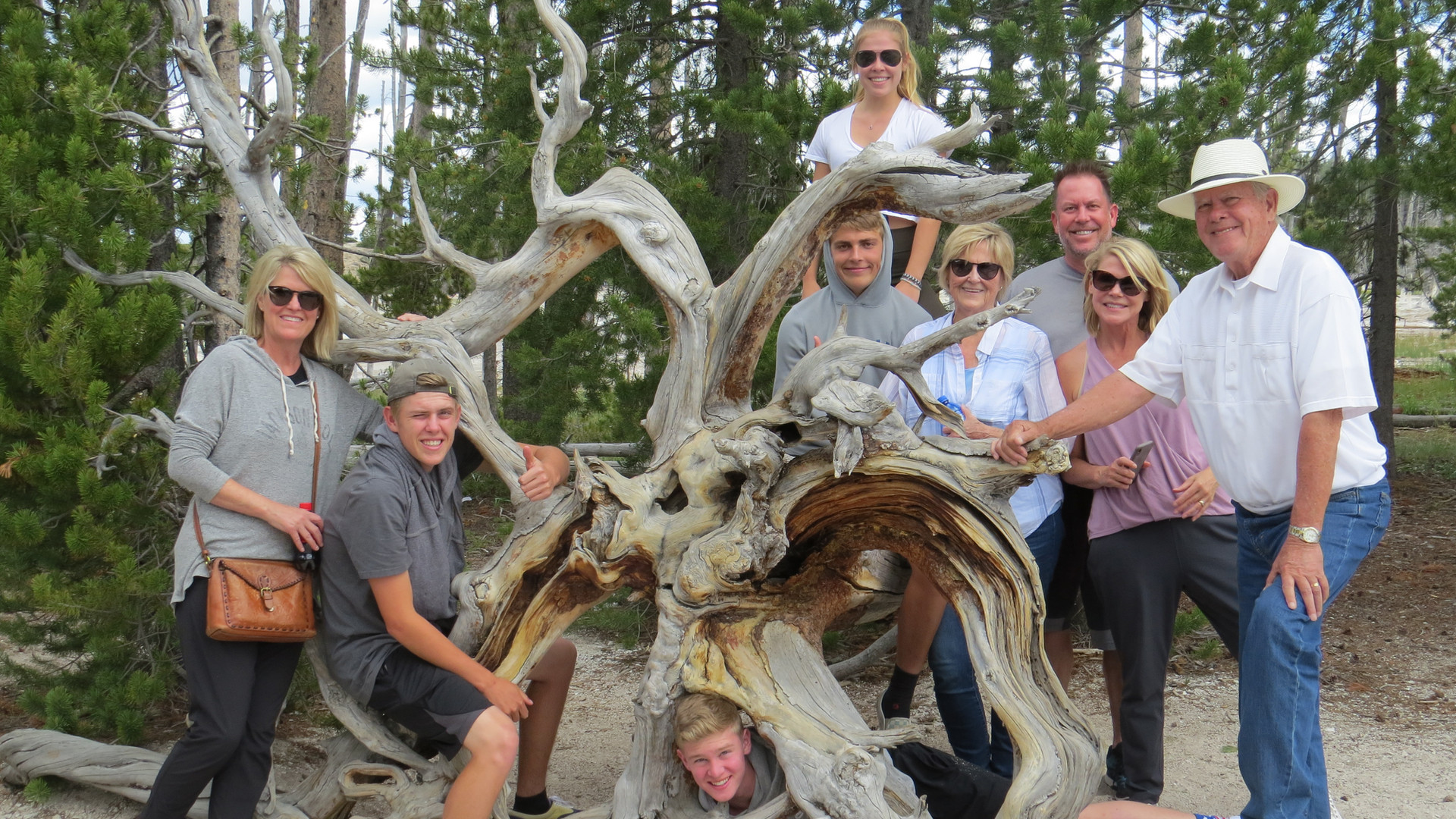 yellowstonedaytours.com-private-tour.JPG