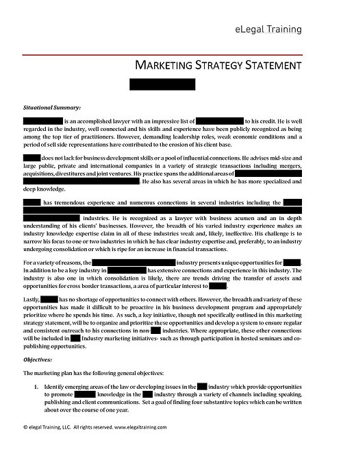 Marketing Strategy Statement, Sample