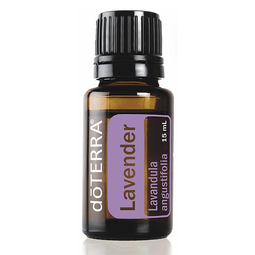 Lavender | 15ml